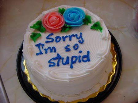 sorry I'm so stupid cake